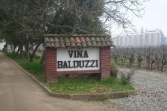 Vina Balduzzi