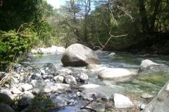 Parque Tricahue 1